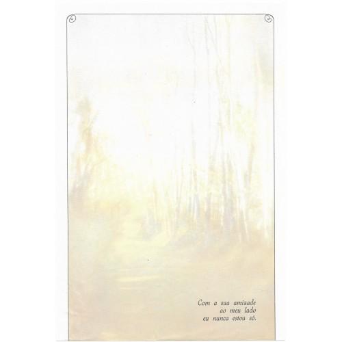 Coleção Paula K03. Papel de Carta Avulso