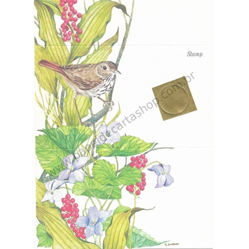 Postalete Antigo Importado Songbird CIN - Current