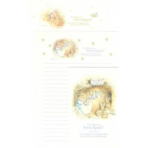 Conjunto de Papel de Carta Importado Peter Rabbit 07 DUPLA