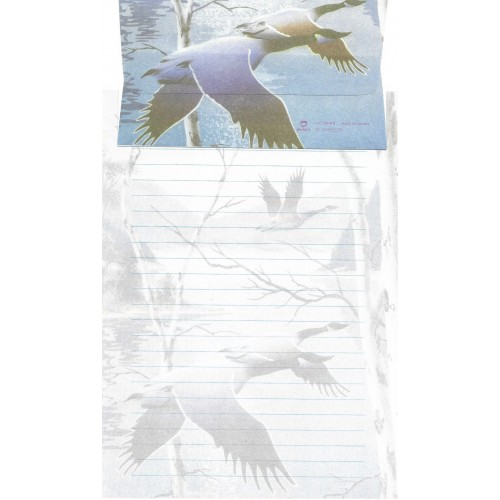 Conjunto de Papel de Carta Antigo Importado DASEN 3016B