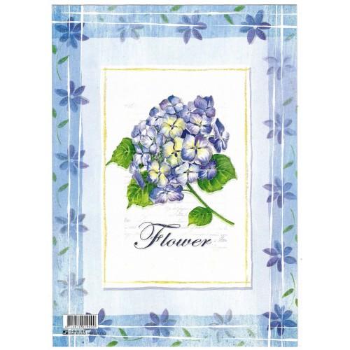 CAPA & Conjunto de Papel de Carta Shinn Jee Flower P180173-2