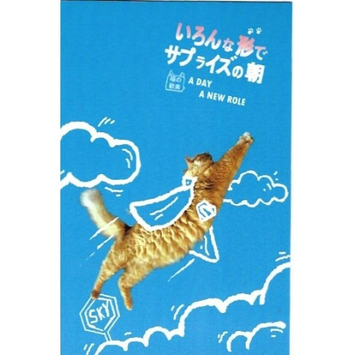 Postcard Postal MISS TIME 09 CHINA