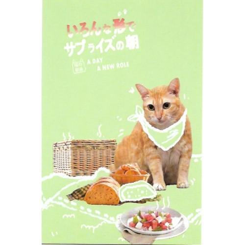 Postcard Postal MISS TIME 11 CHINA